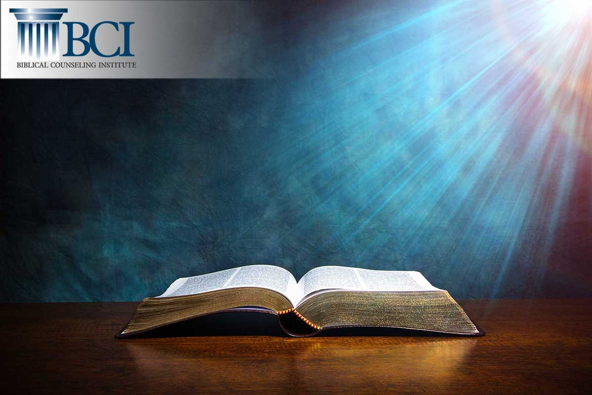 The Biblical Counseling Institute